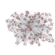 Безмасштабные сети и параметры безмасштабных сетей