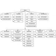 Классификация блогов и сетей для авторских записей