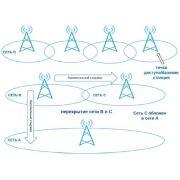 Проектирование сети: курсовая по построению локальной сети