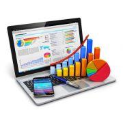 Магистерская диссертация: информационные технологии в управлении